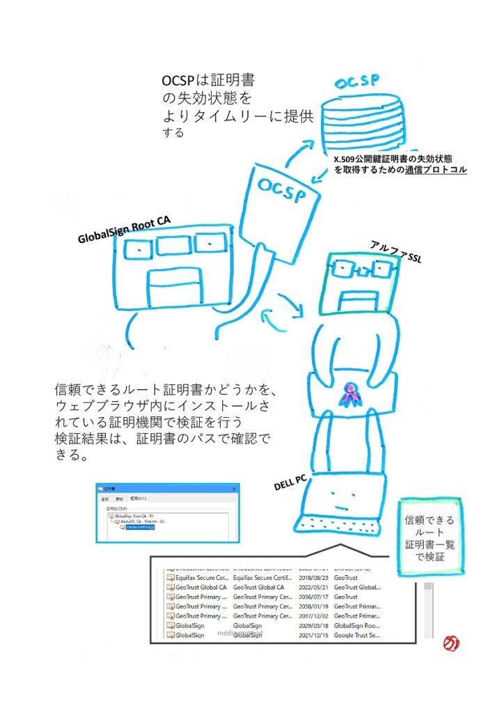 パソコン内の証明書のパスを確認